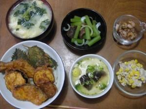 Dinner20100708_400